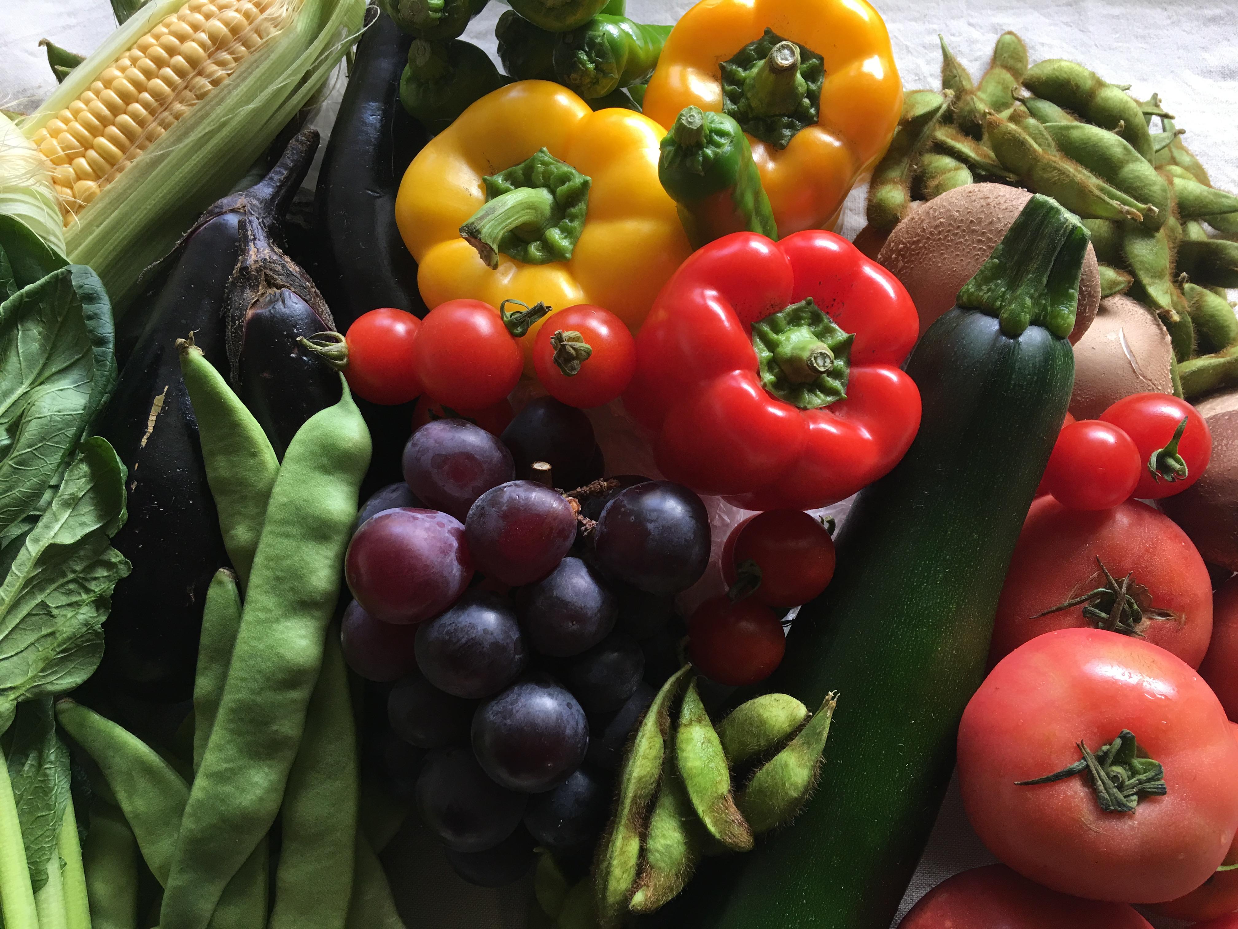 オーガニック野菜の写真