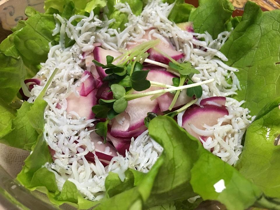 赤カブとシラスのサラダの写真
