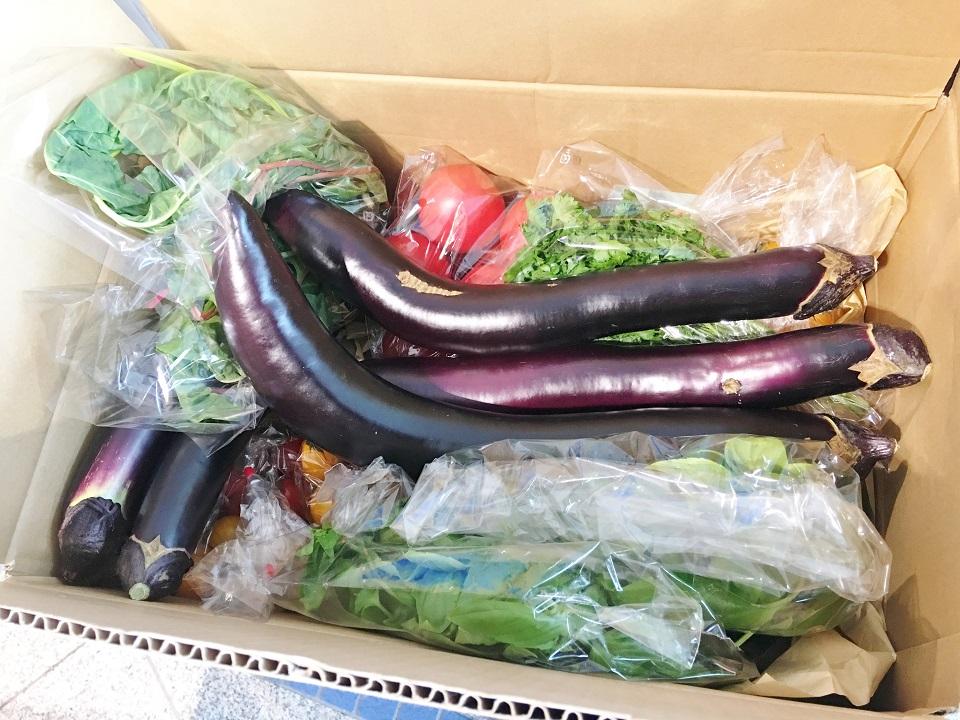 段ボールに入った野菜の写真