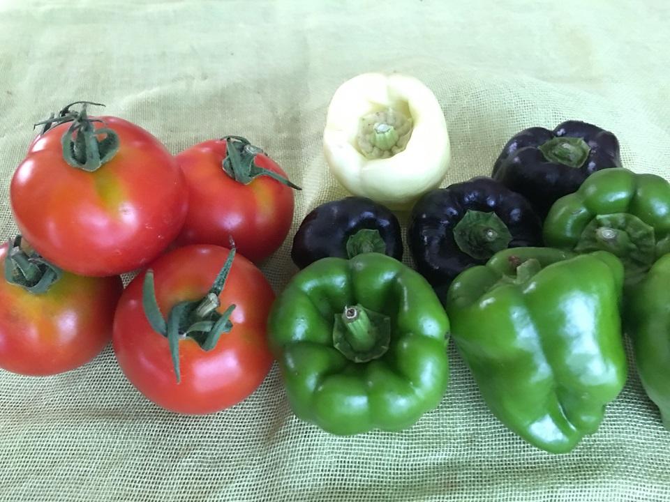 オーガニック・ファーマーズ・マーケットで買ったトマトとピーマンの写真