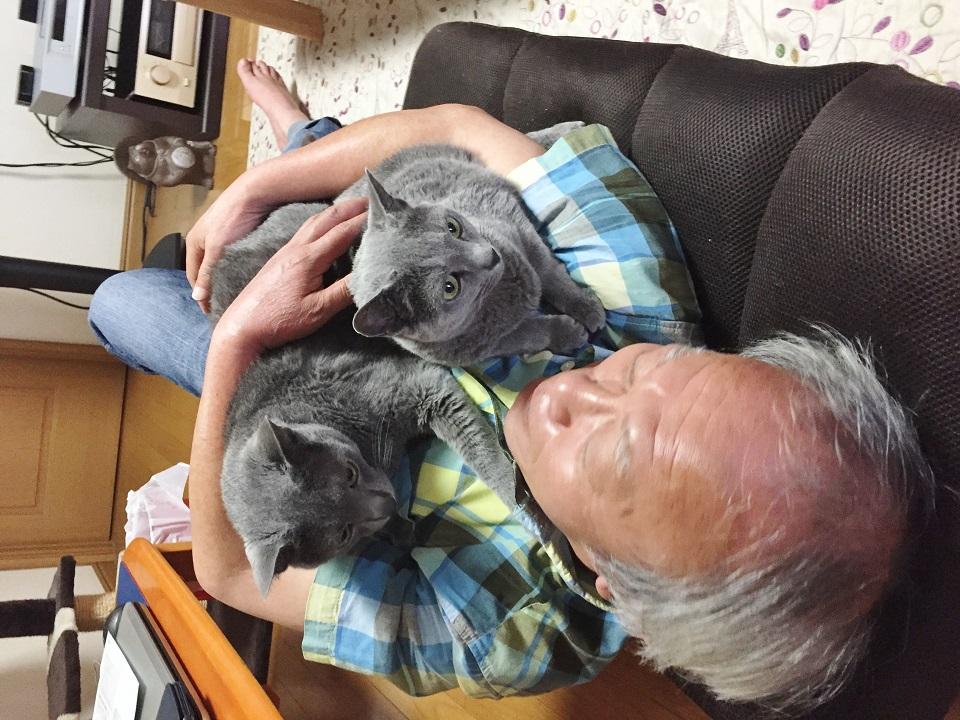 夫が猫2匹と合体している写真