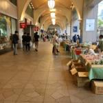 名古屋でオーガニックな野菜を買うならナナちゃんストリート!|ゴニョ研