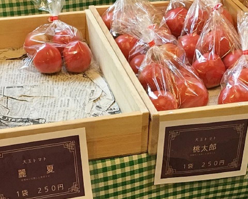 オーガニック夕暮れ市のトマトの写真