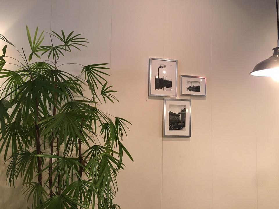 壁に飾られた絵と観葉植物の写真