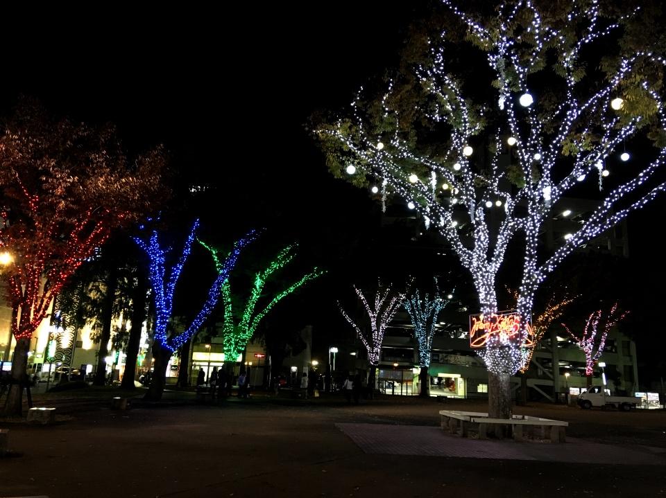クリスマス仕様の夜景の写真
