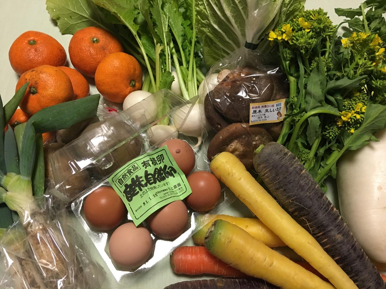 買い物した野菜や卵の写真