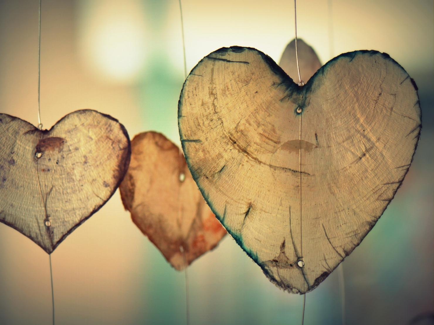 愛を感じさせる写真