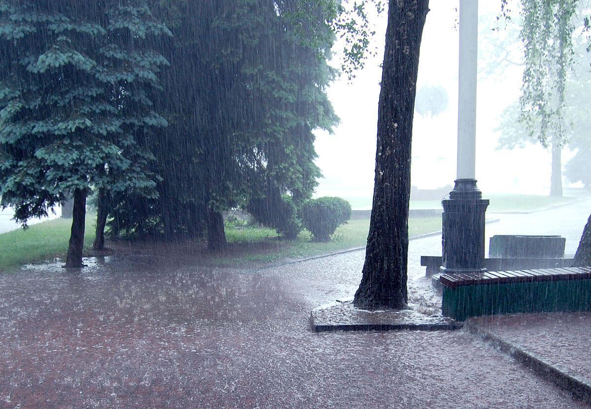 激しい雨の写真