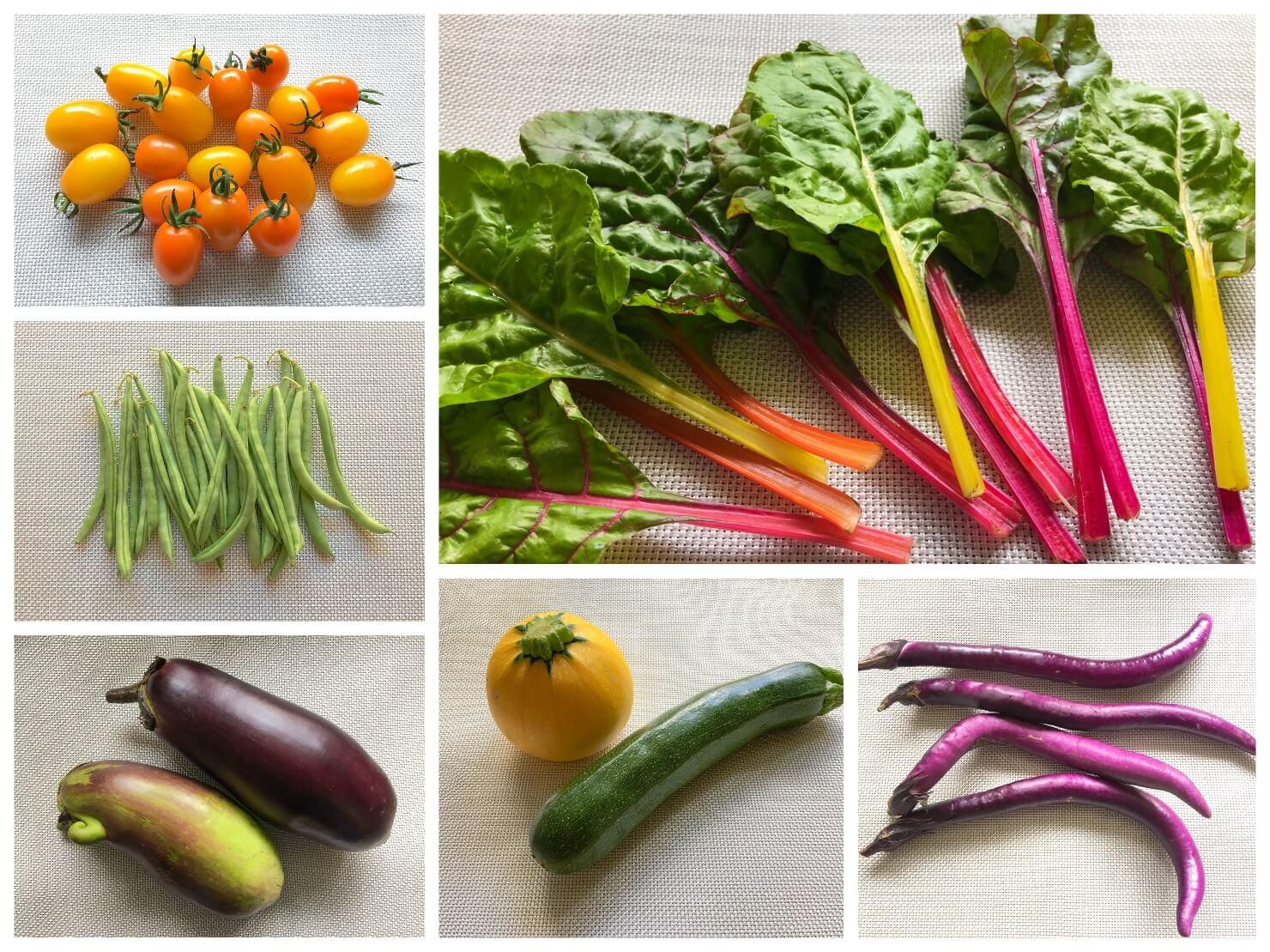 いろいろな野菜の写真