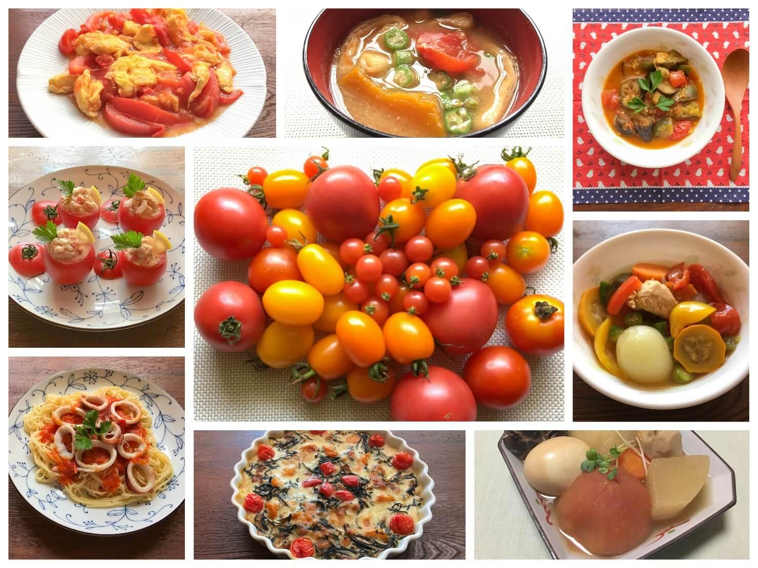 トマトやトマト料理のコラージュ