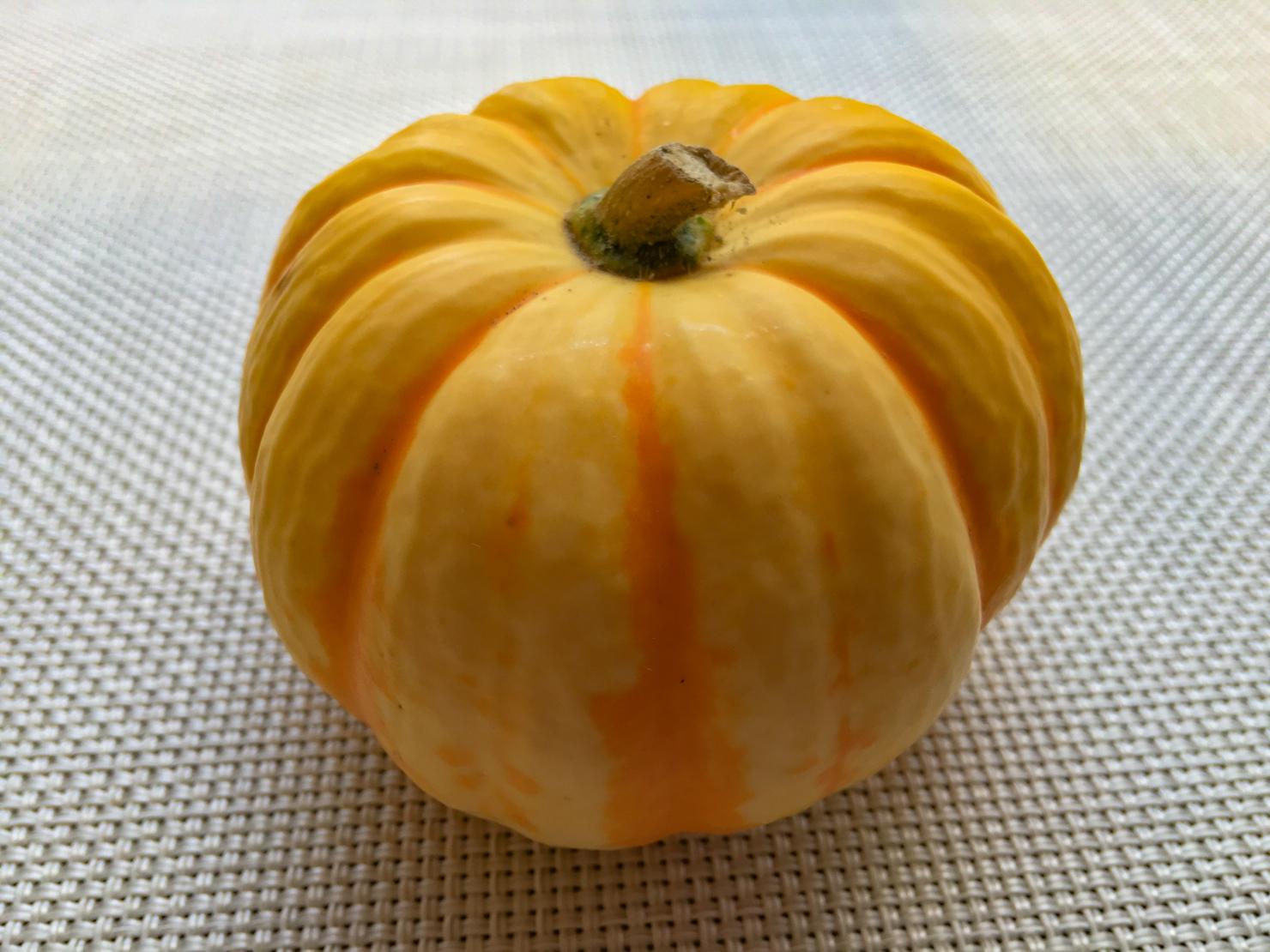 バターナッツかぼちゃの写真