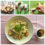 新生姜を生でバリバリ食べるためのアジの唐揚げ|ゴニョ研