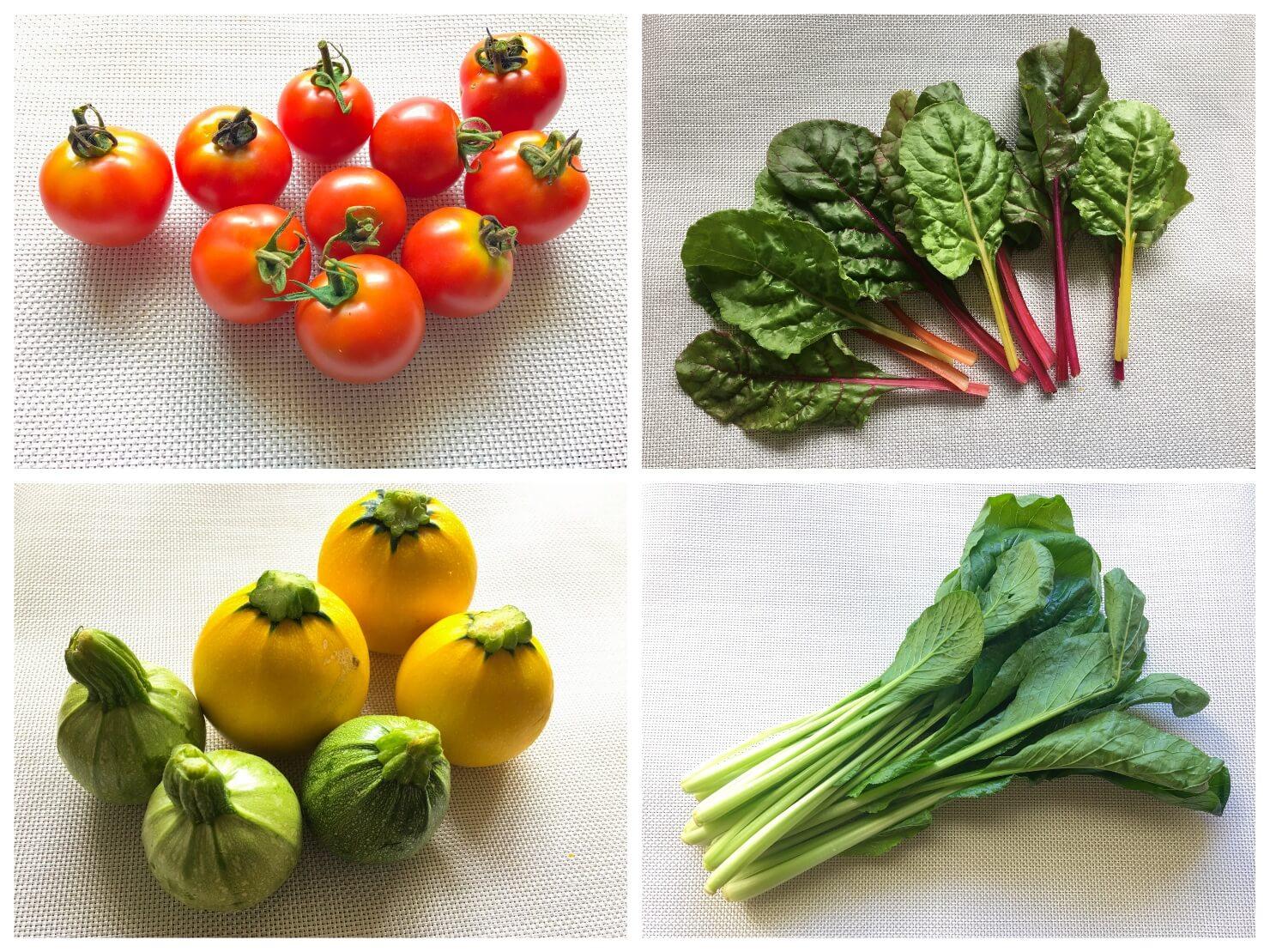 生き生きした野菜の写真