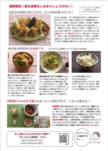 2019年9月新生姜のレシピ