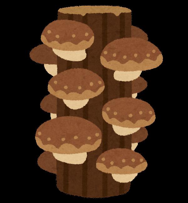 原木栽培のしいたけのイラスト
