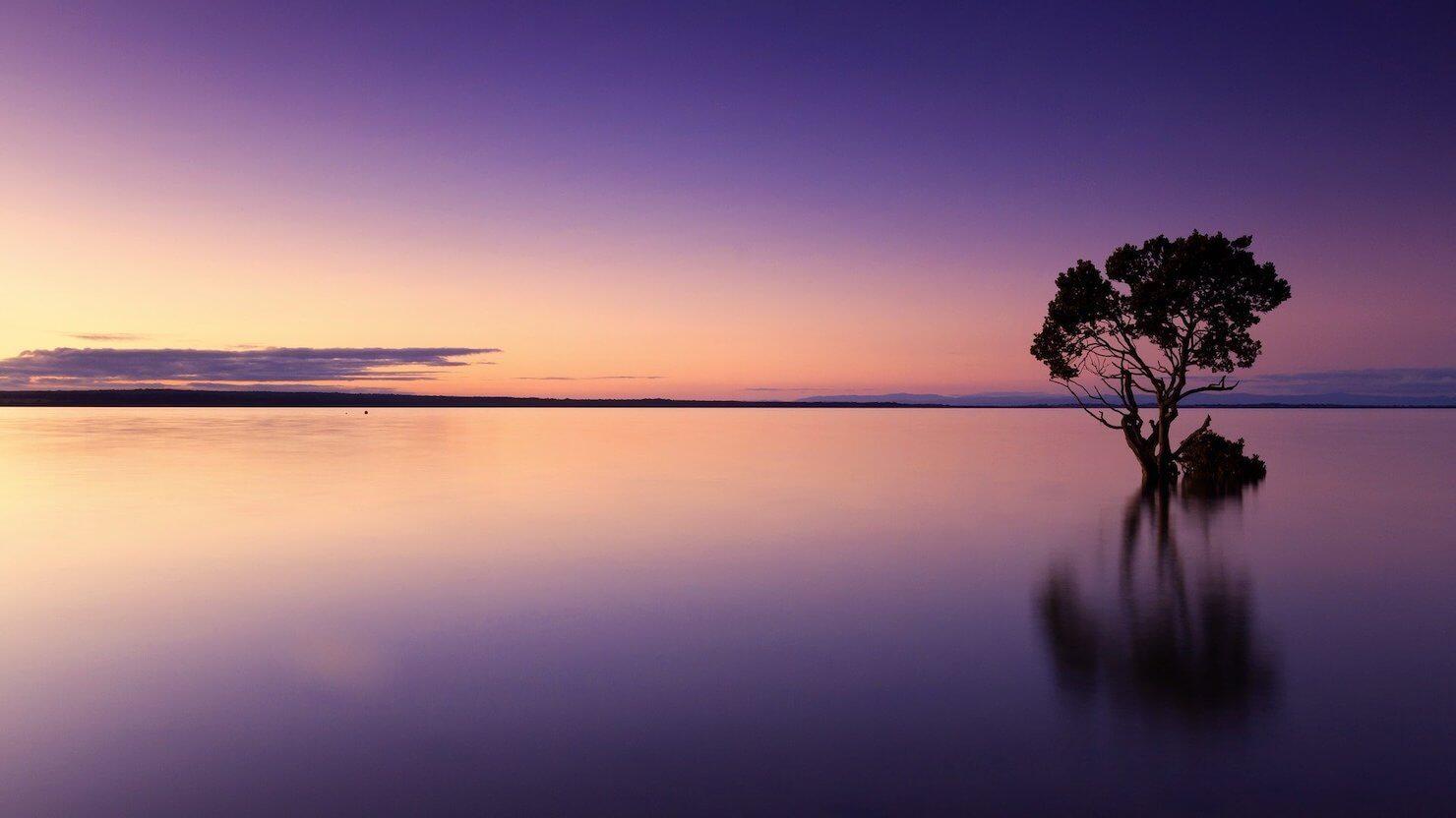美しい夕暮れの写真