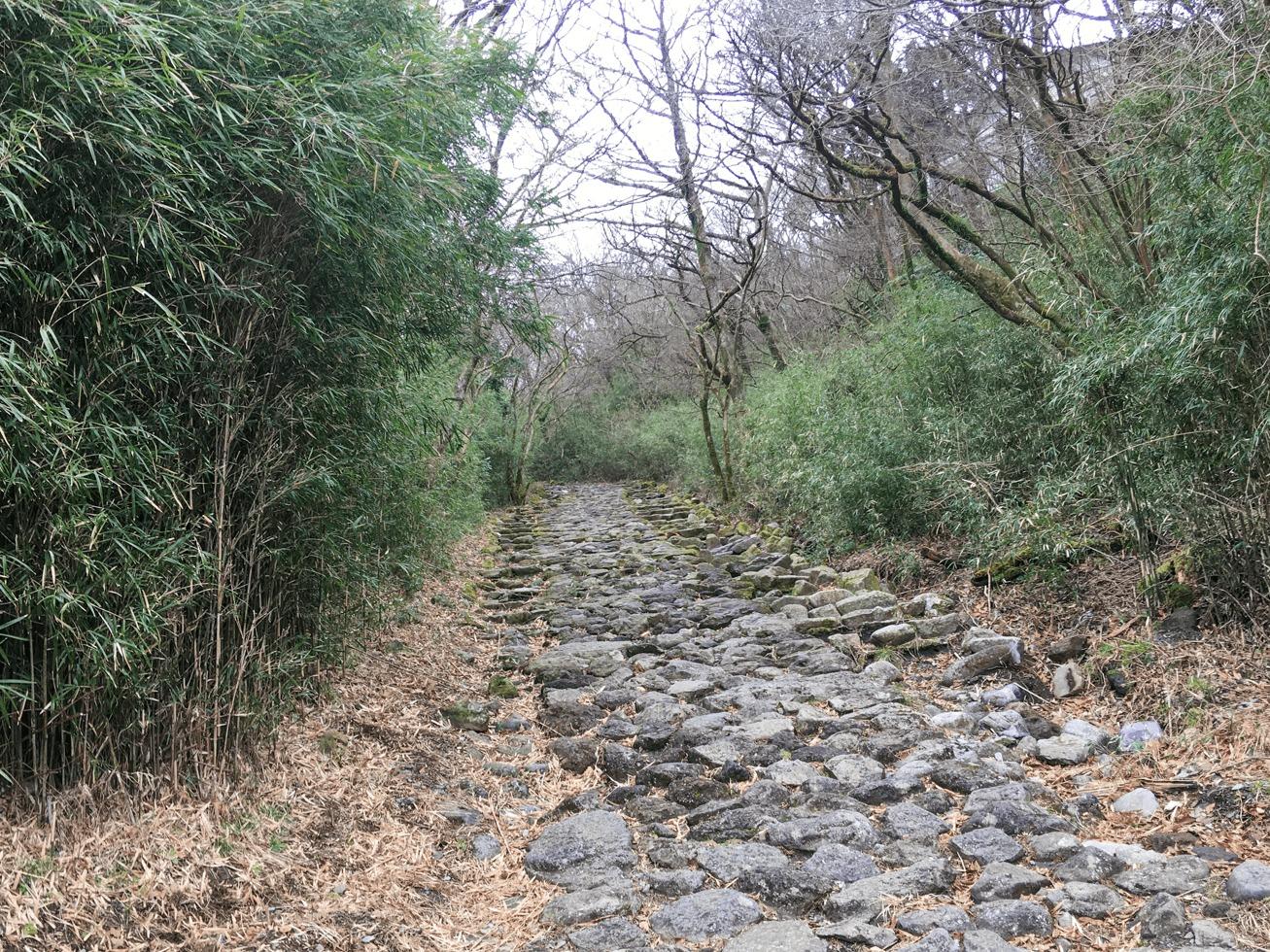 旧東海道の石畳の写真