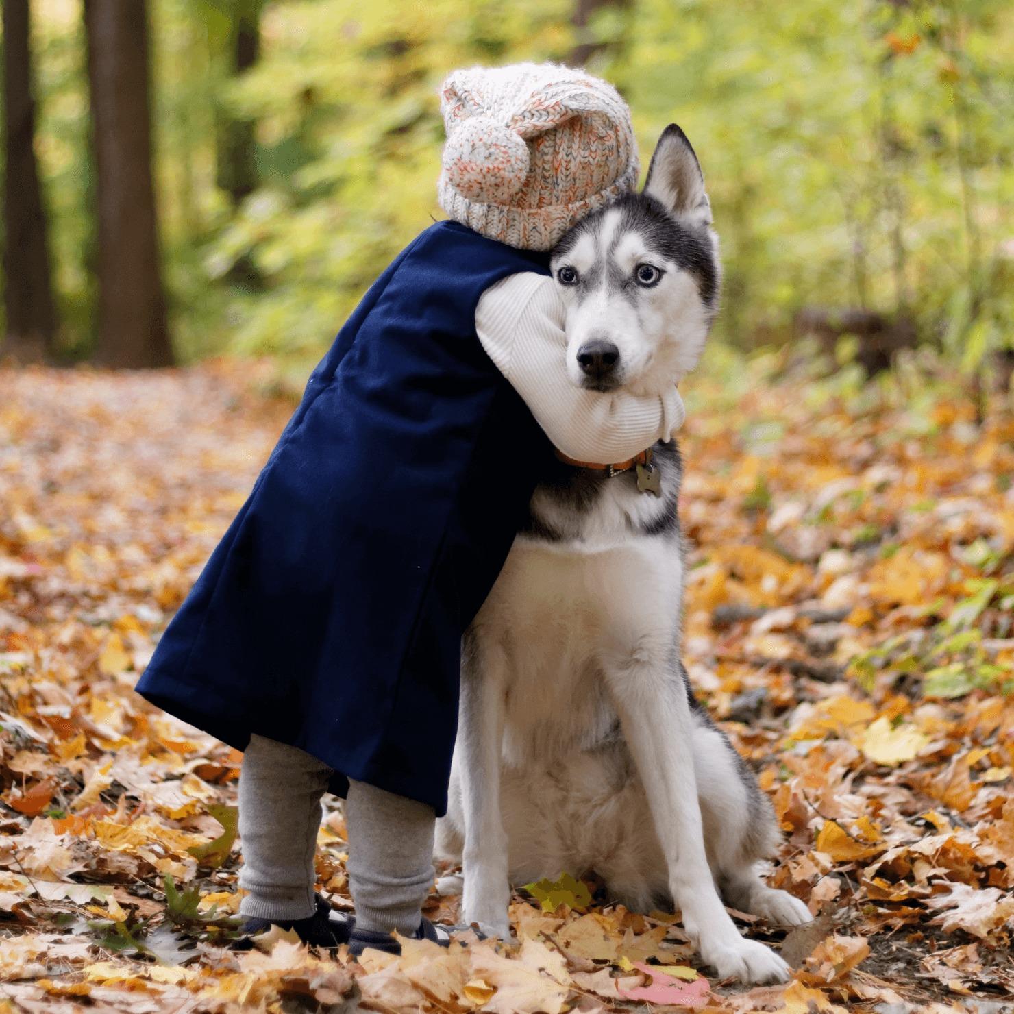 犬をハグしている子どもの写真