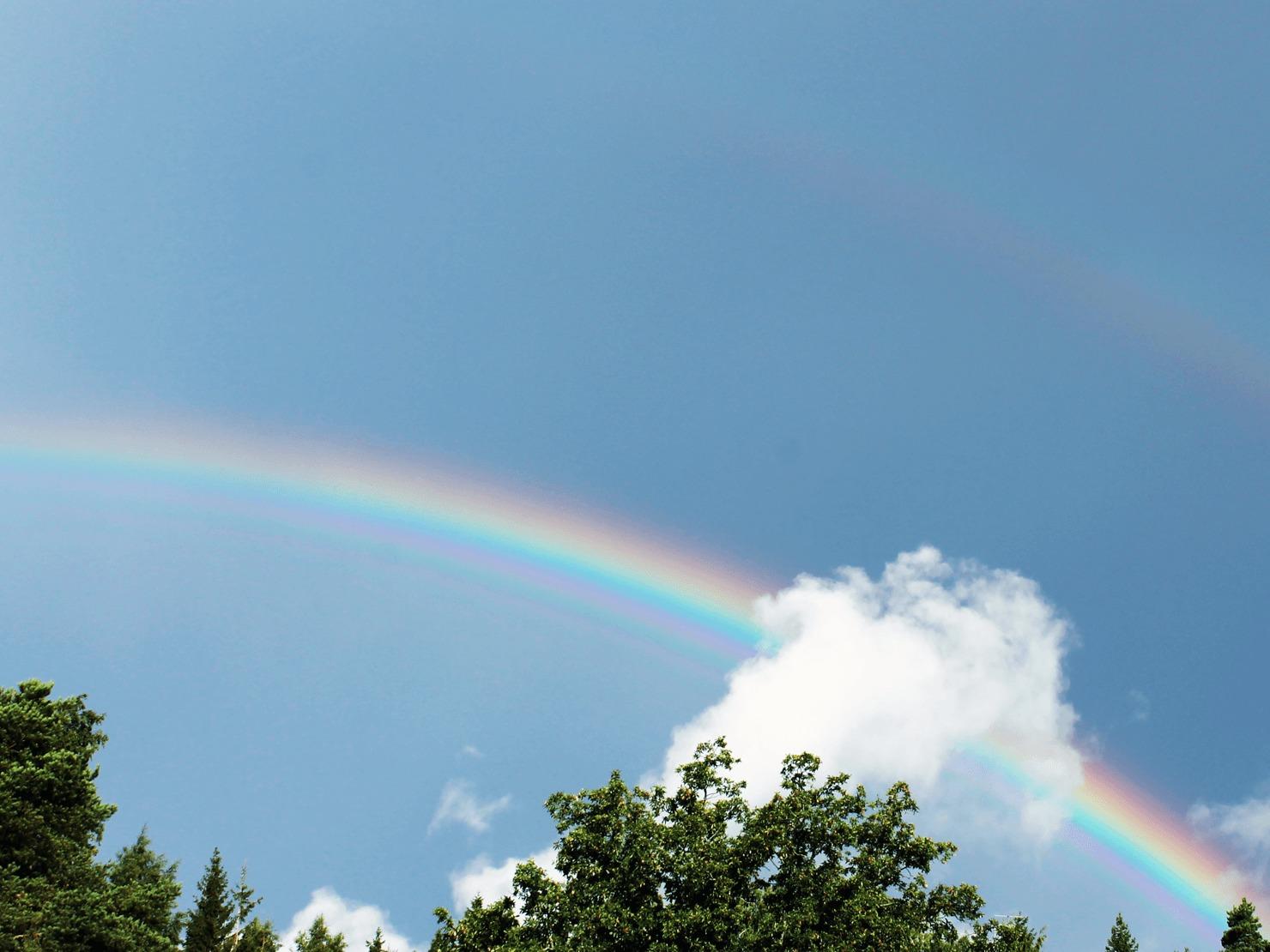 空に虹がかかっている写真
