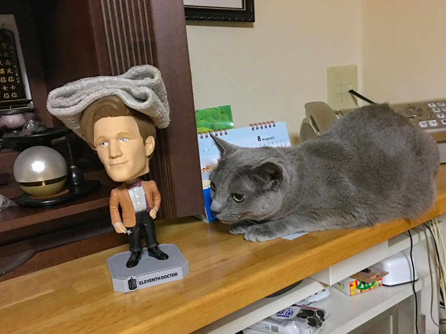 仏壇の横にいる猫の写真