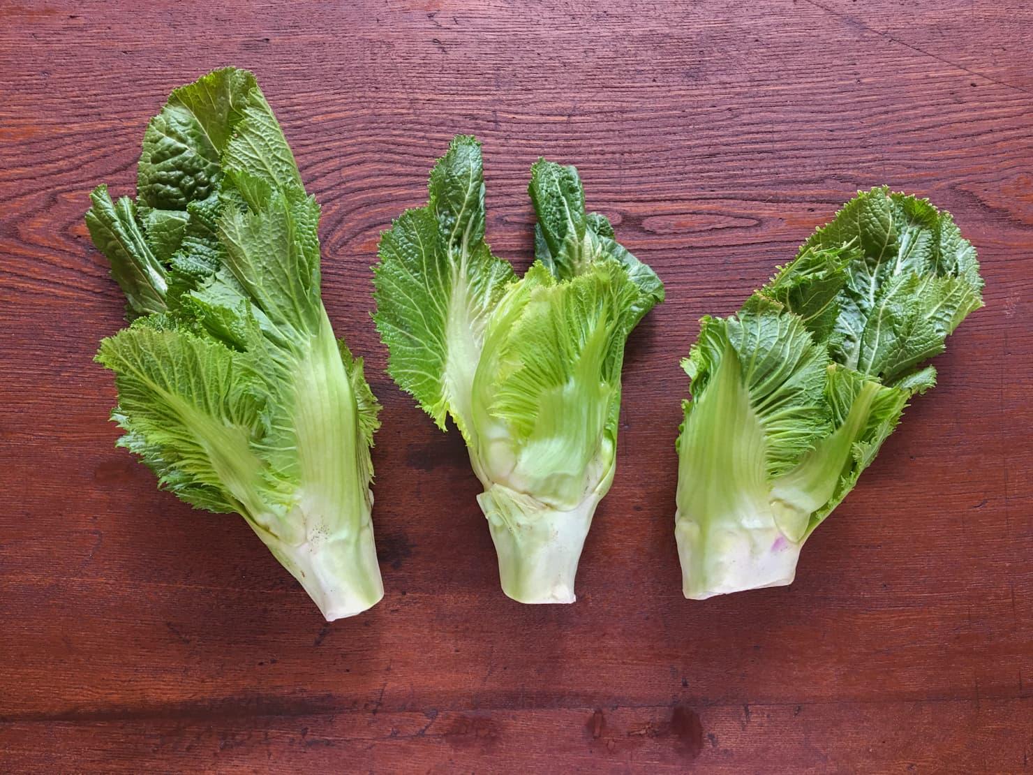 子持ち高菜の写真