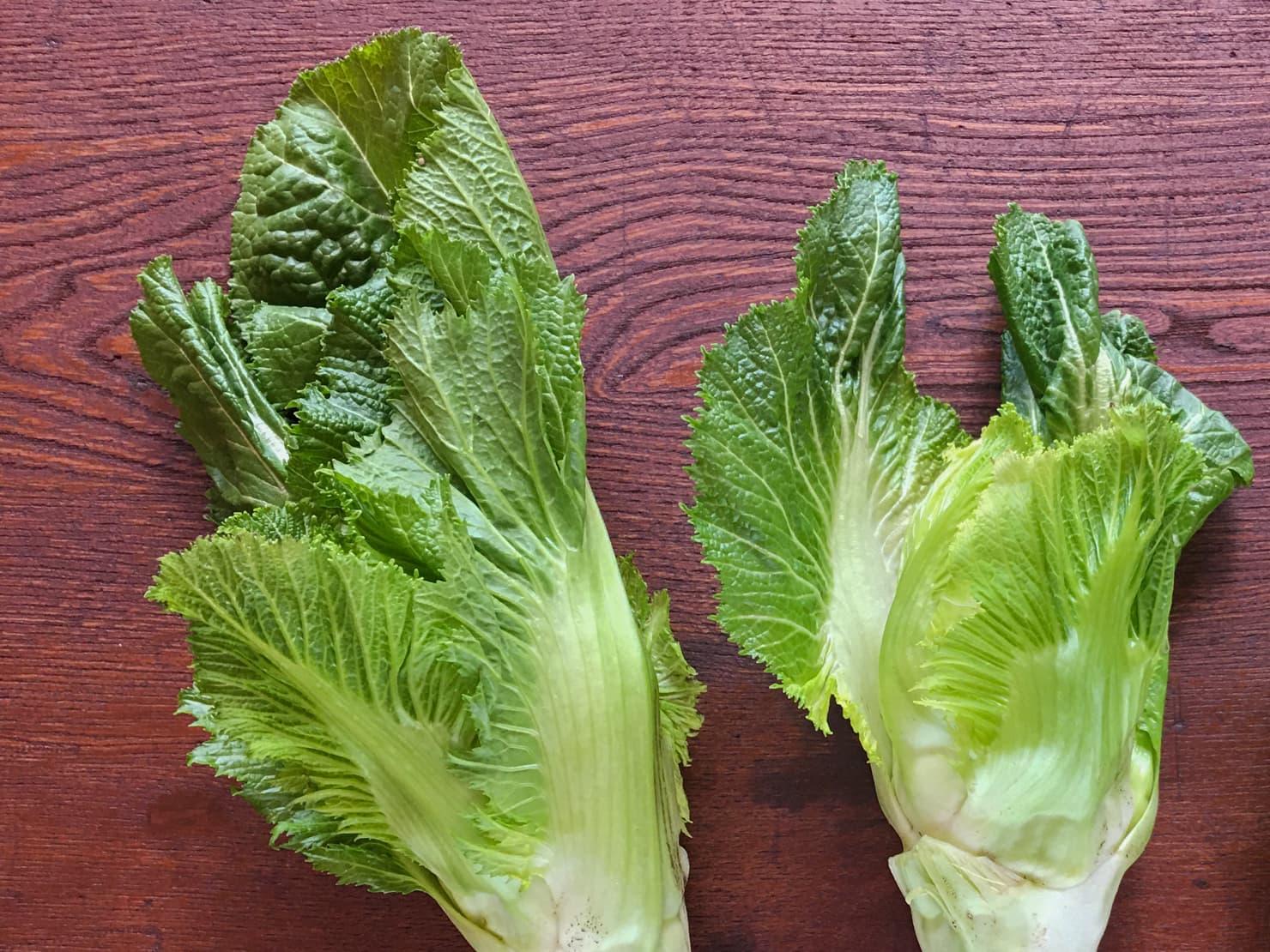 葉っぱがついた子持ち高菜の写真