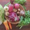 野菜セットの写真