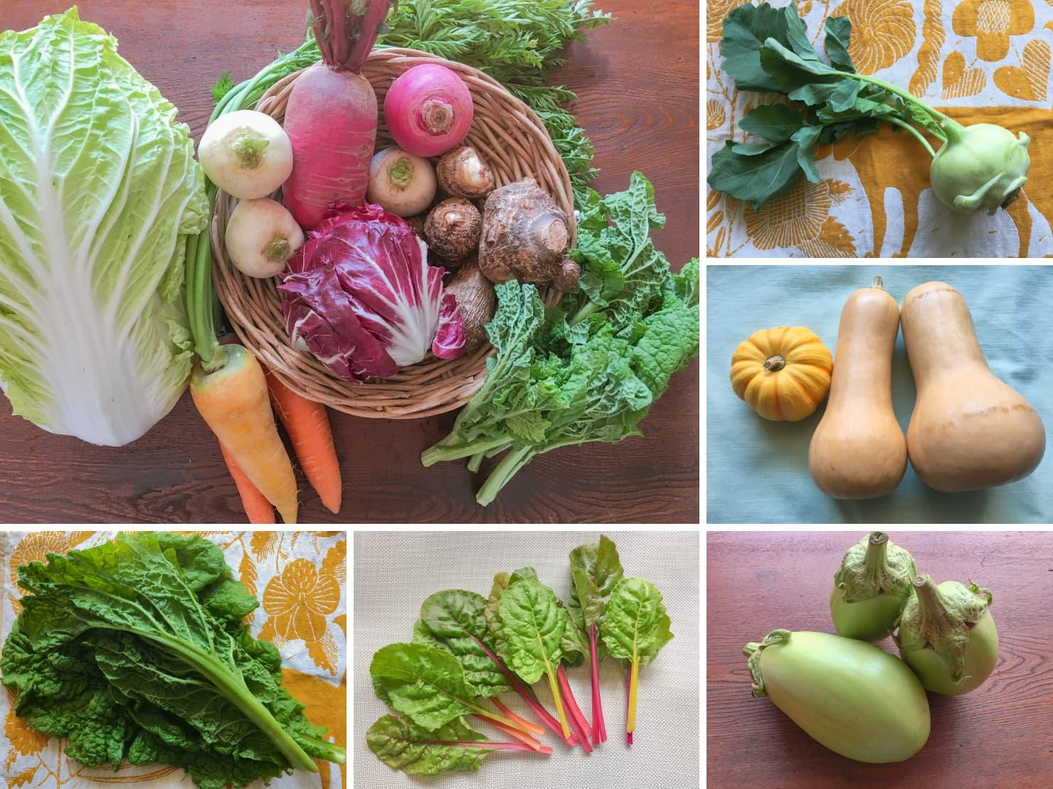 野菜セットや珍しい野菜の写真