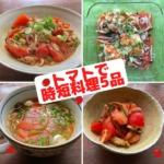 トマトで5品のオンライン料理教室で作る料理の写真